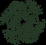 和風模様_針葉樹の枝2の浮世絵イラスト素材