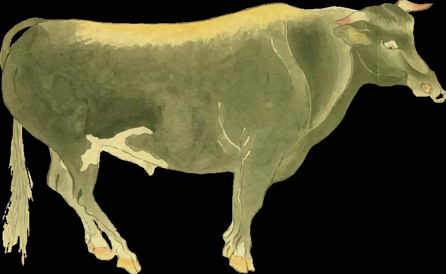Free ukiyo-e item of Tamba beef