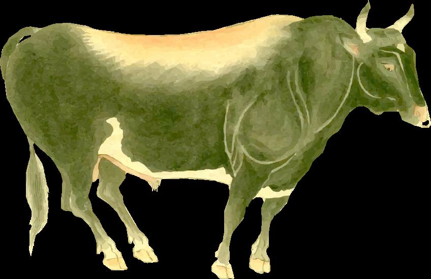 Free ukiyo-e item of Totoumi beef