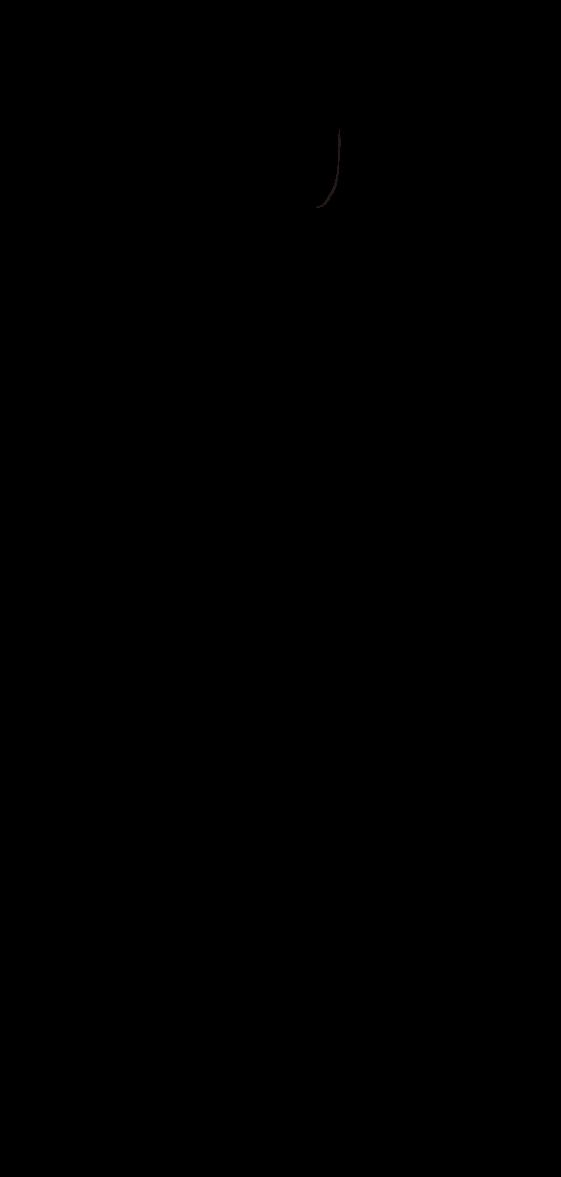 Illustration of Oiran